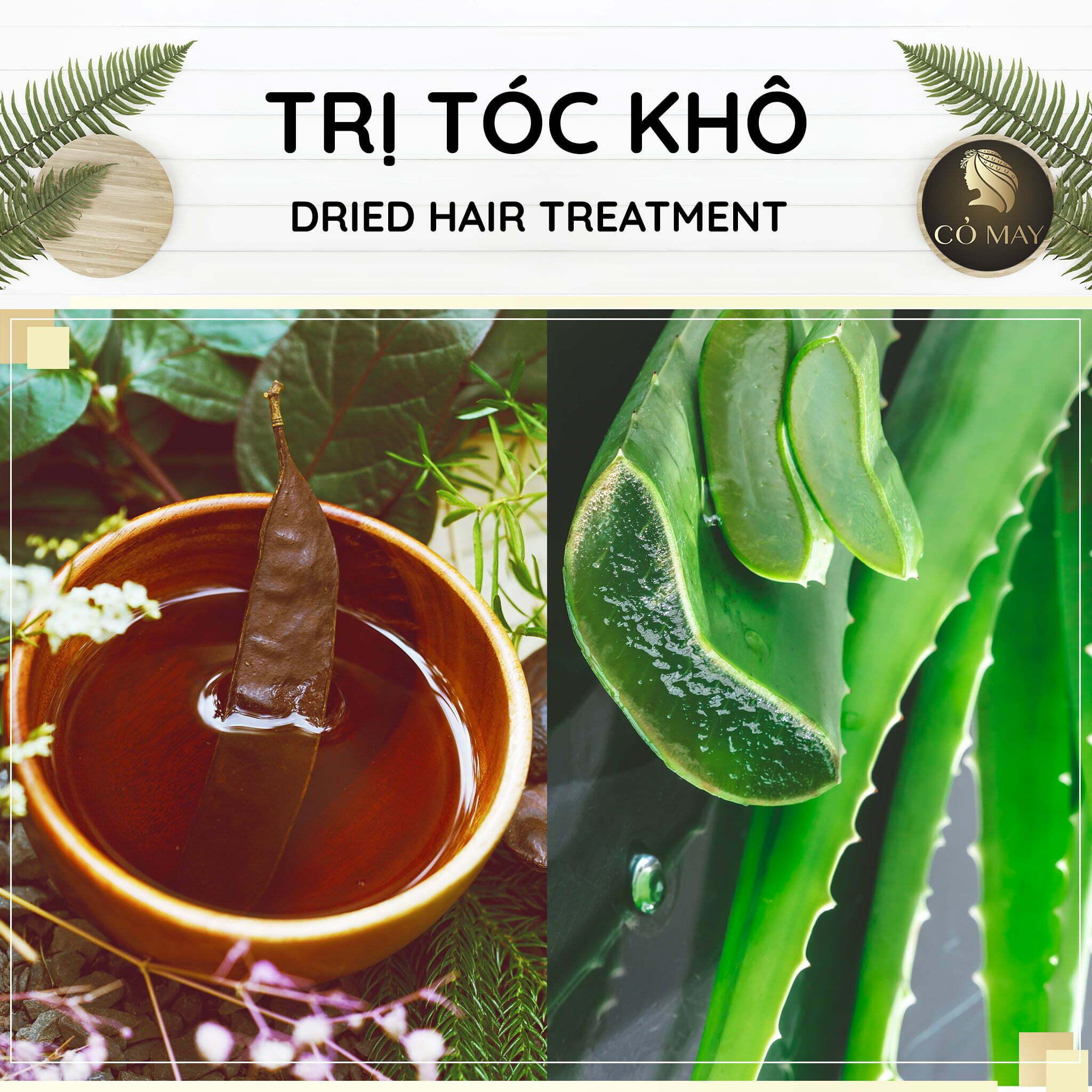Nàng tranh thủ ghé nhà Cỏ May để trị tóc khô, gội đầu bồ kết hay các combo đặc biệt cho tóc.
