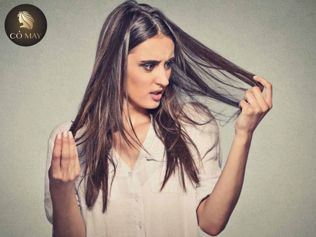 Cách Trị Tóc Bạc Sớm Từ Lá Ổi – Trả Lại Mái Tóc Đen Nhánh