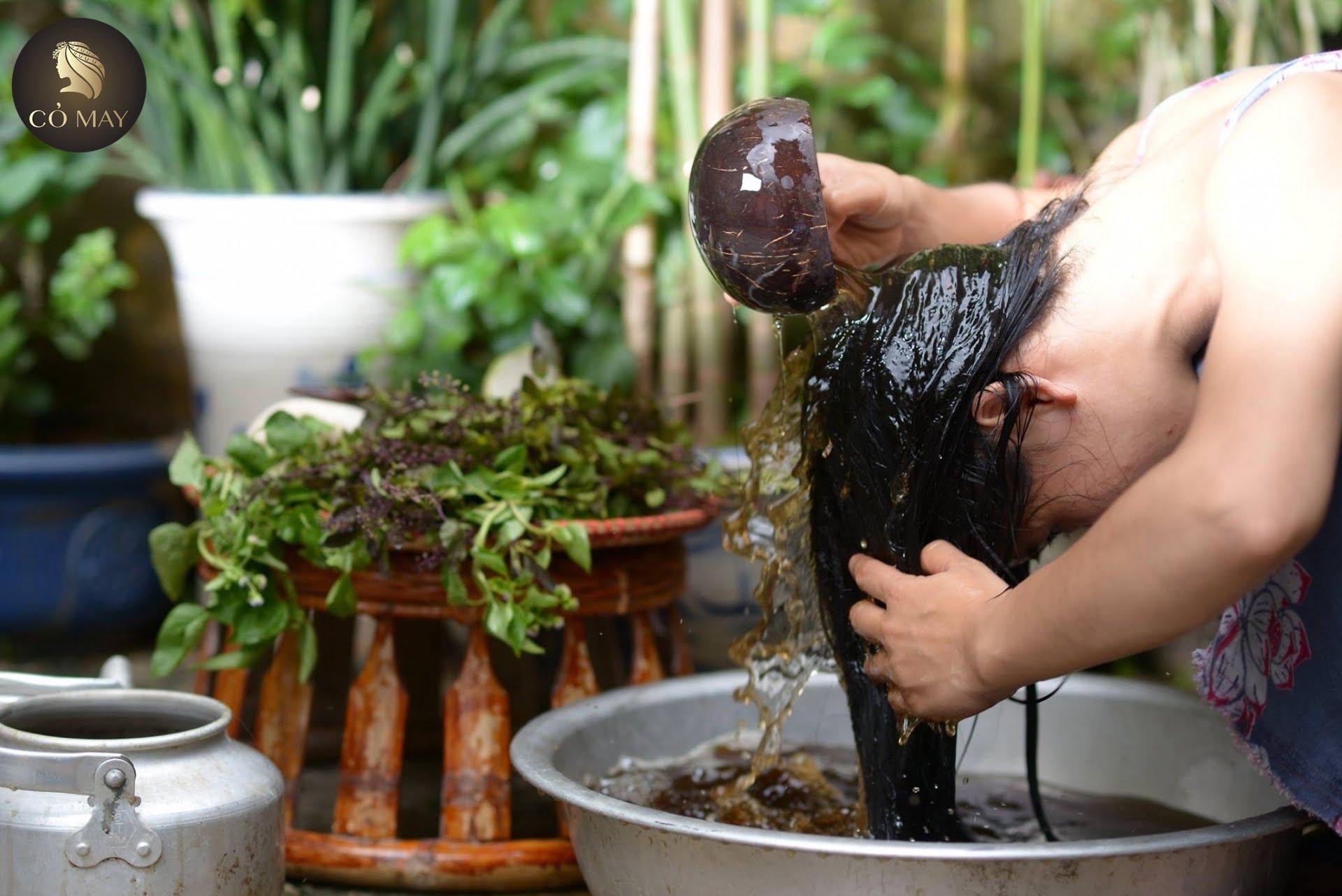 Gội đầu thảo dược Gò Vấp là phương pháp chăm sóc tóc an toàn hiệu quả